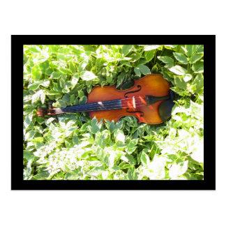 Postkarten-Geige und Efeu-Violinenpostkarte Postkarte