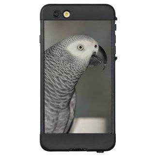 Prächtiger afrikanisches Grau-Papagei LifeProof NÜÜD iPhone 6 Plus Hülle
