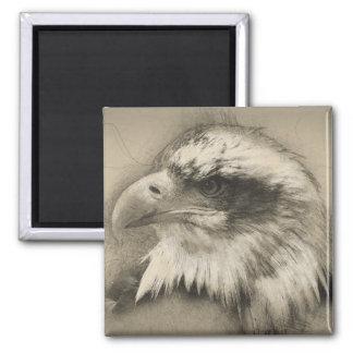 Prachtvoller Weißkopfseeadler Setch Quadratischer Magnet