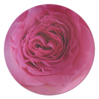 Prideful rosa Rose Melaminteller