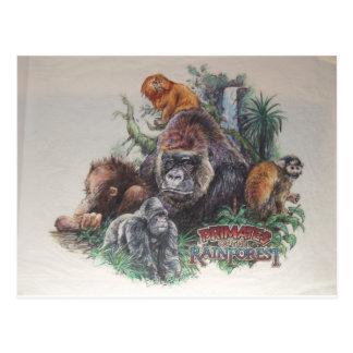 Primate des Regenwaldes Postkarte