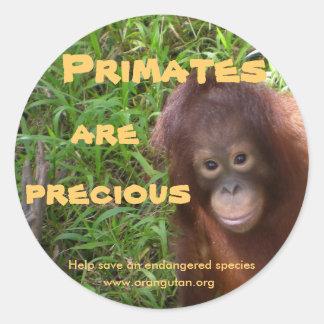 Primate sind wertvoll runder aufkleber