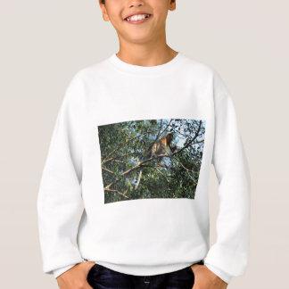 Proboscis-Affe in Borneo Sweatshirt