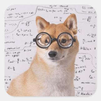 Professor Barkley Square Sticker (glatt)