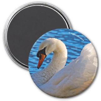 Profil eines stummen Schwans Runder Magnet 7,6 Cm