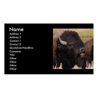 Profil oder Visitenkarte, Bisonbrummen Visitenkarten