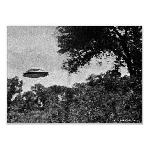 Projekt blaues Buch-UFO über Baum-Plakat