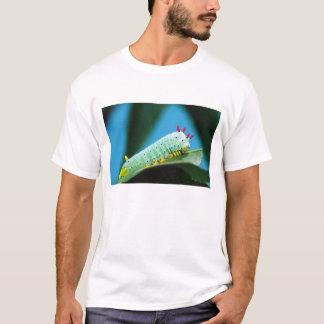 PROMETHEUS-Motten-Raupe, Callosamia T-Shirt