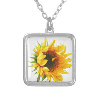 Provincetown Sonnenblume Versilberte Kette