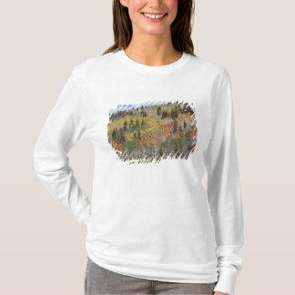 Provo Fluss- und Espenbäume T-Shirt