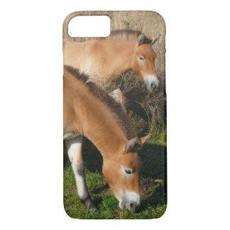 Przewalski Pferde 02 iPhone 8/7 Hülle