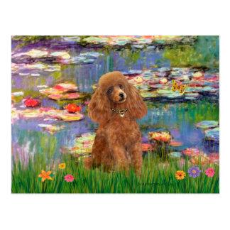 Pudel (Aprikose 10) - Lilien 2 Postkarte