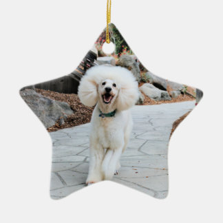 Pudel - gebrannt - Trainer Keramik Ornament