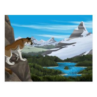 Puma-Aussicht Postkarte