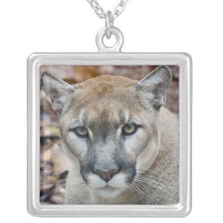 Puma, Berglöwe, Florida-Panther, Puma Versilberte Kette