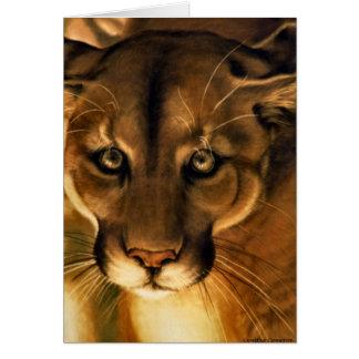 Puma - Berglöwe - Puma Karte