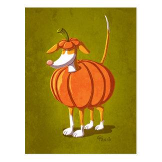 Pumpkin Podi Postkarte