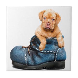 puppy-1154468_640 keramikfliese