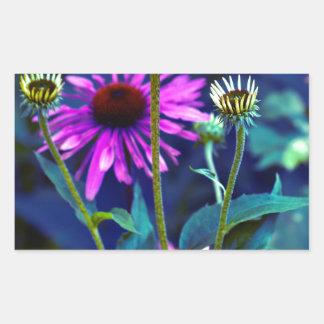 Purple Coneflowers Rechteckiger Aufkleber