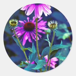 Purple Coneflowers Runder Aufkleber