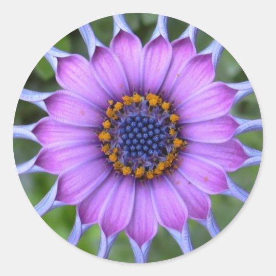 purple flower runder aufkleber
