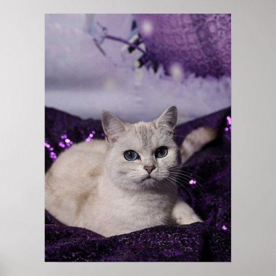 Purple XMAS Cats Poster