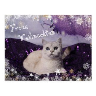 Purple XMAS Cats Postkarte