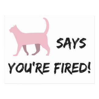 Pussykatze sagt, dass Sie gefeuert werden! Postkarte