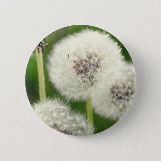 Pusteblume 2013 1 runder button 5,7 cm