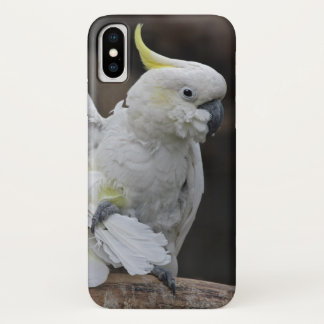 Putzender Cockatoo iPhone X Fall iPhone X Hülle