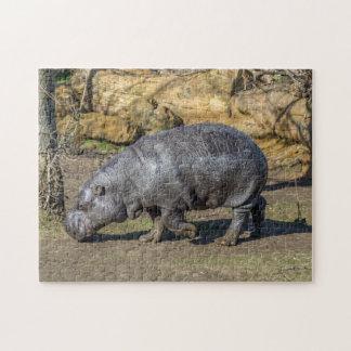 Pygmäenflusspferd-Fotopuzzlespiel Puzzle