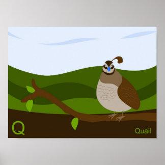 Q für Wachtel-Plakat