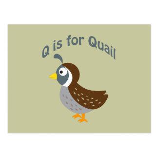Q ist für Wachteln Postkarte