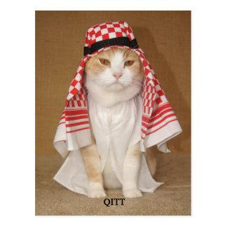 QITT/CAT POSTKARTEN