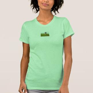 QPC von der Wiederverwendung von der T Shirts