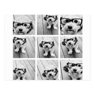 Quadratische Collage des Foto-9 - Schwarzweiss Postkarte