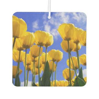 Quadratischer gelber Tulpe-Lufterfrischer Autolufterfrischer