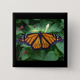 Quadratischer Knopf 2 Zoll, Monarch-Art #3b Quadratischer Button 5,1 Cm