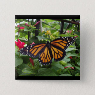 Quadratischer Knopf 2 Zoll, Monarch-Art #5b Quadratischer Button 5,1 Cm