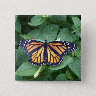 Quadratischer Knopf 2 Zoll, Monarch-Art #6b Quadratischer Button 5,1 Cm