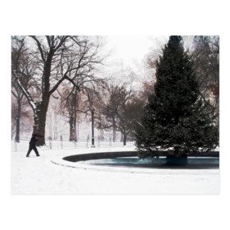 Quadratischer Park-Winter 2005 Madisons Postkarte