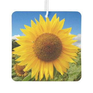 Quadratischer Sonnenblume-Lufterfrischer Lufterfrischer