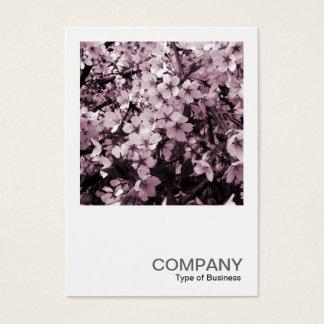 Quadratisches Foto 041 - Kirschblüte Visitenkarte