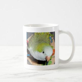 Quäker-Papagei Kaffeetasse
