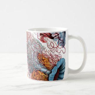 Quallen Ernst Haeckels Discomedusae Kaffeetasse