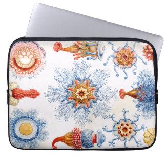 Quallen Ernst Haeckels Siphonophorae Bluebottle! Laptop Sleeve
