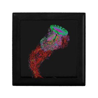Quallen in den Neonfarben Erinnerungskiste