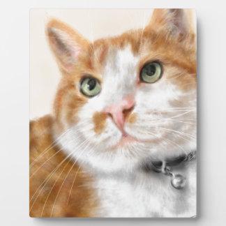 Quere mit Augen Katze mit grünen Augen Fotoplatte