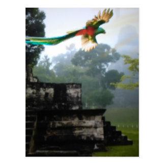 Quetzel in Tikal Postkarte