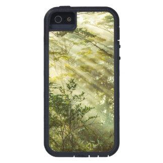 Queulat Park, Patagonia-Waldlandschaft, Aysen, Etui Fürs iPhone 5